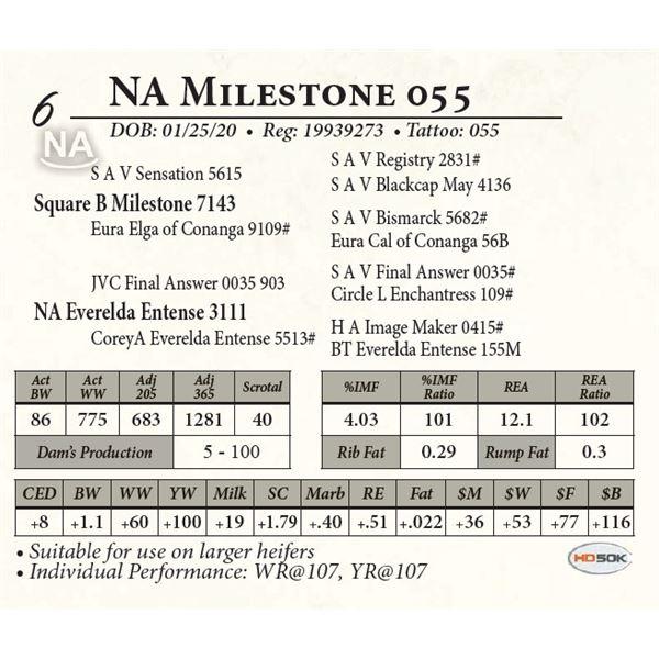 NA Milestone 035