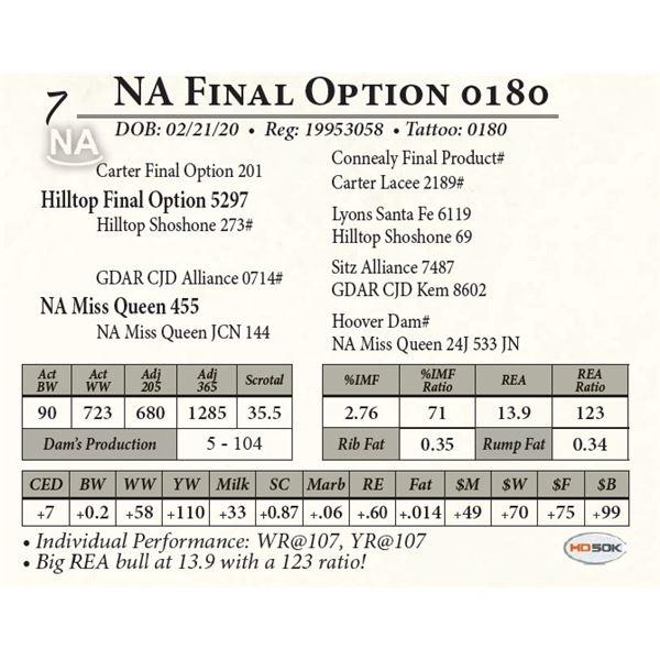 NA Final Option 0180