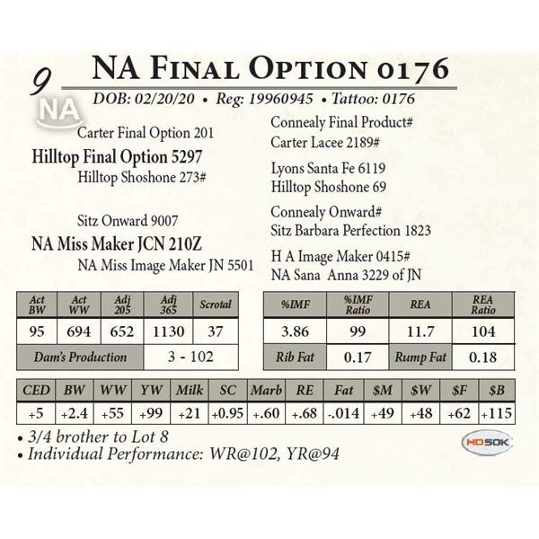 NA Final Option 0176