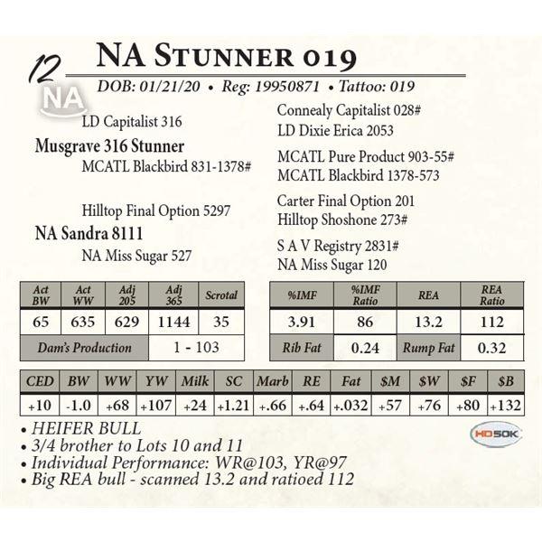 NA Stunner 019