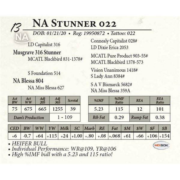 NA Stunner 022