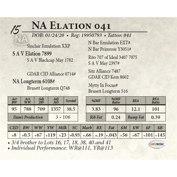 NA Elation 041