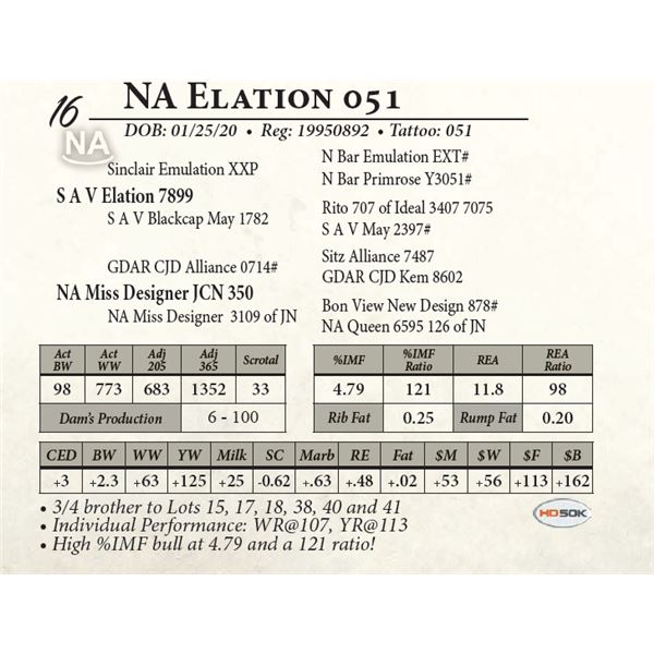 NA Elation 051