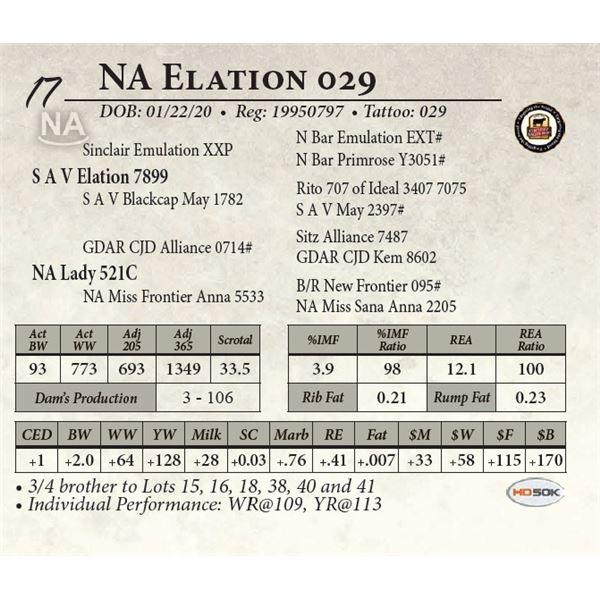 NA Elation 029
