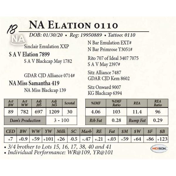 NA Elation 0110