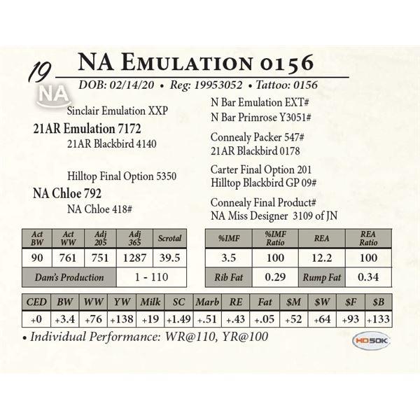 NA Emulation 0156