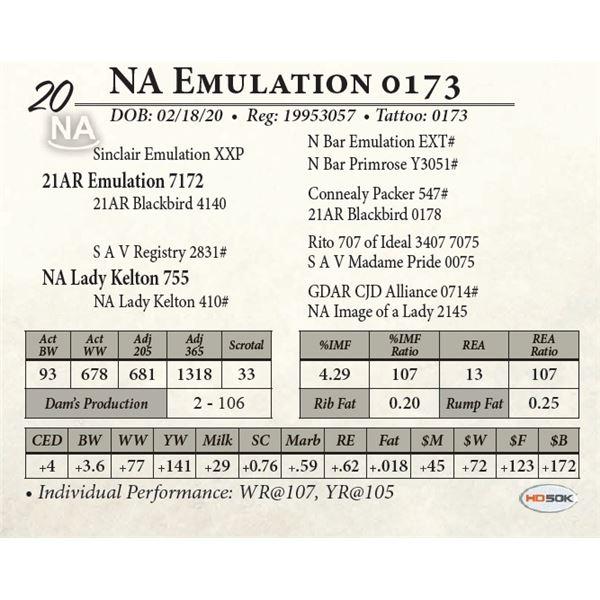 NA Emulation 0173