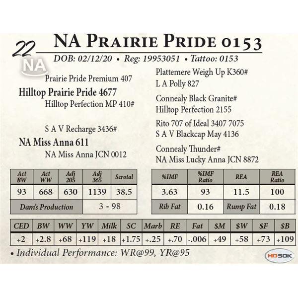 NA Prairie Pride 0153