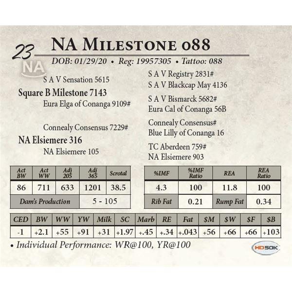 NA Milestone 088