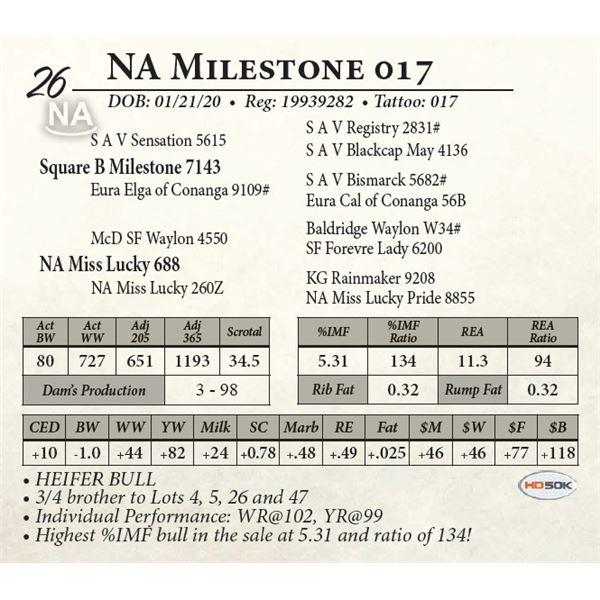 NA Milestone 017