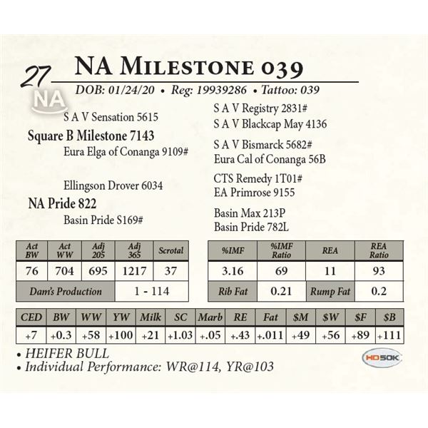 NA Milestone 039