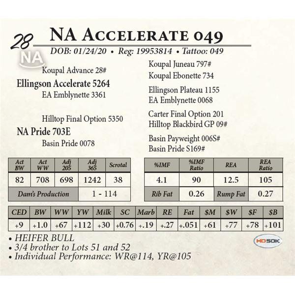 NA Accelerate 049
