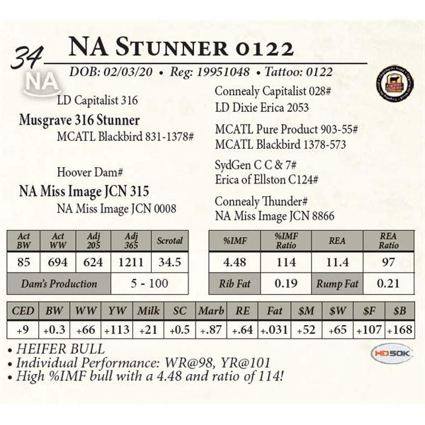 NA Stunner 0122