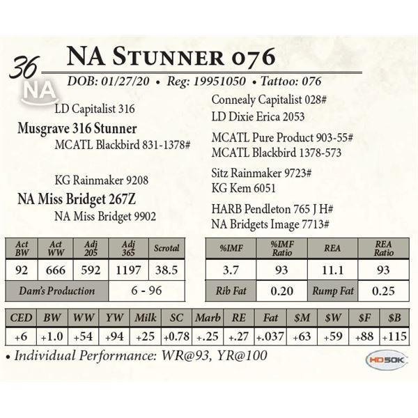 NA Stunner 076