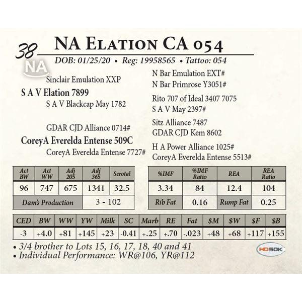 NA Elation CA 054