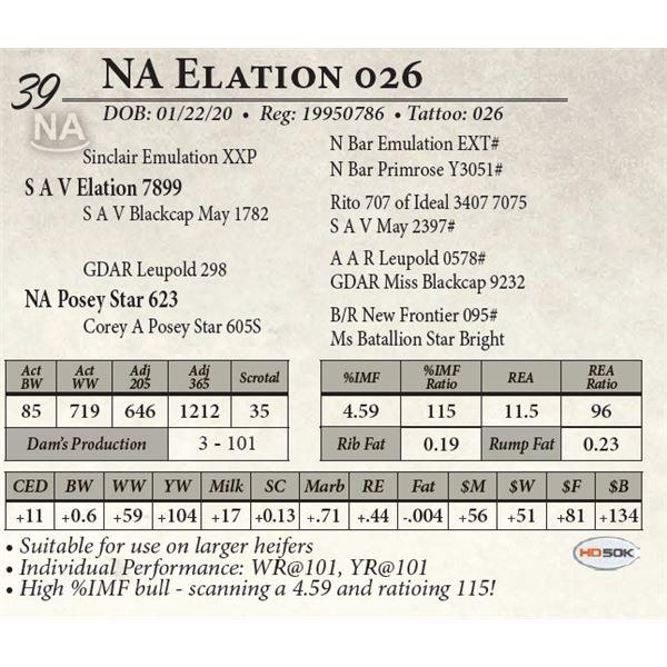 NA Elation 026