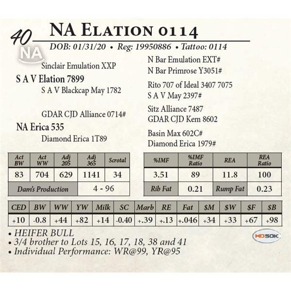 NA Elation 0114