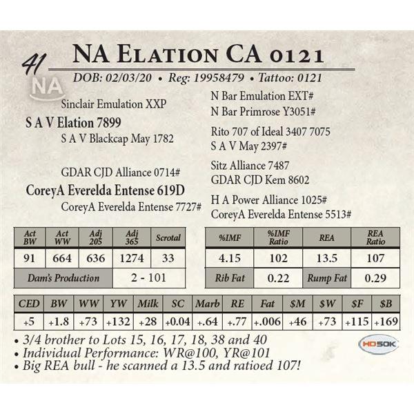 NA Elation CA 0121