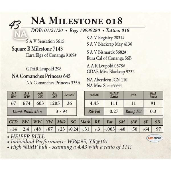 NA Milestone 018