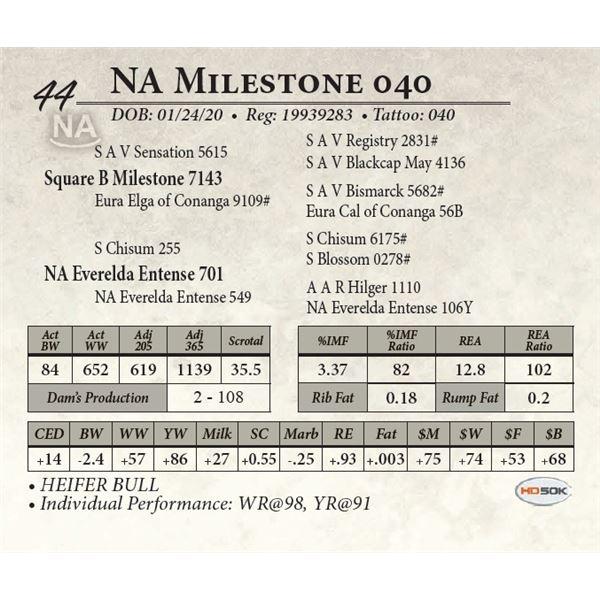 NA Milestone 040