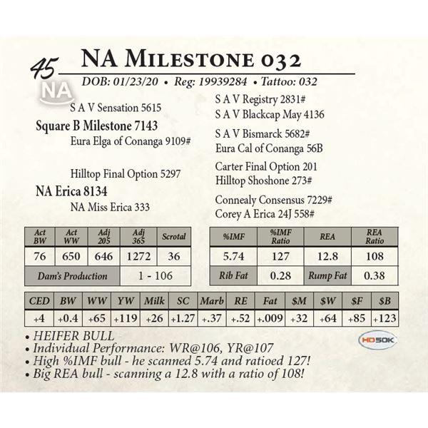 NA Milestone 032