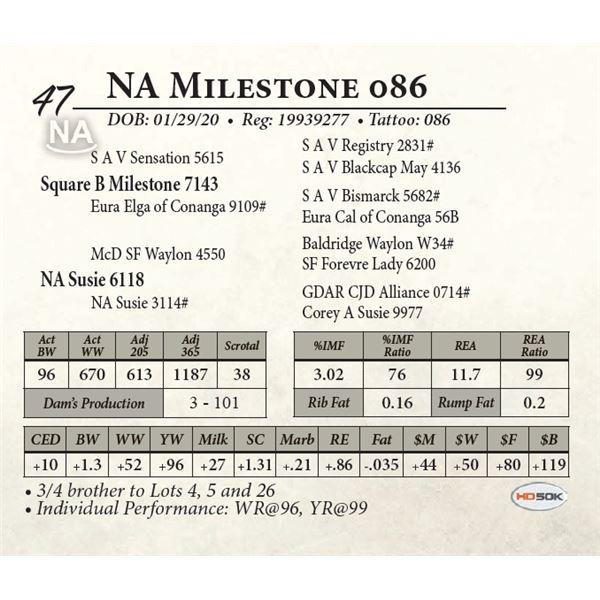 NA Milestone 086