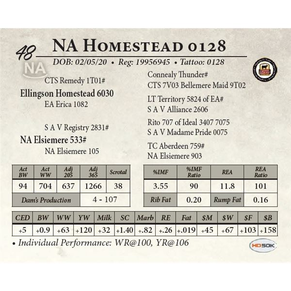 NA Homestead 0128