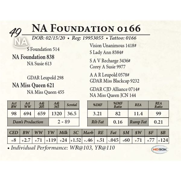 NA Foundation 0166
