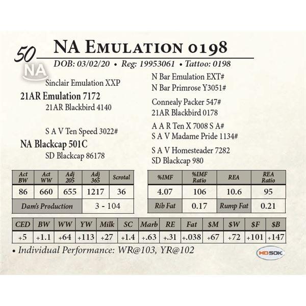 NA Emulation 0198