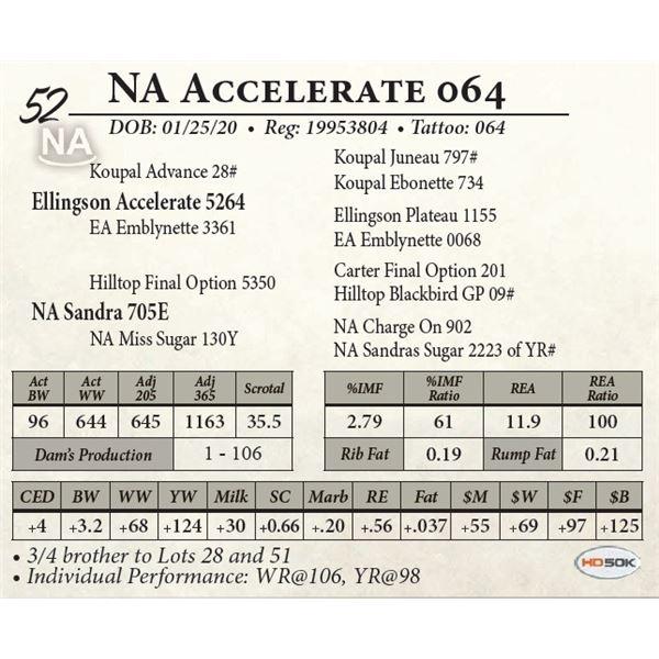 NA Accelerate 064