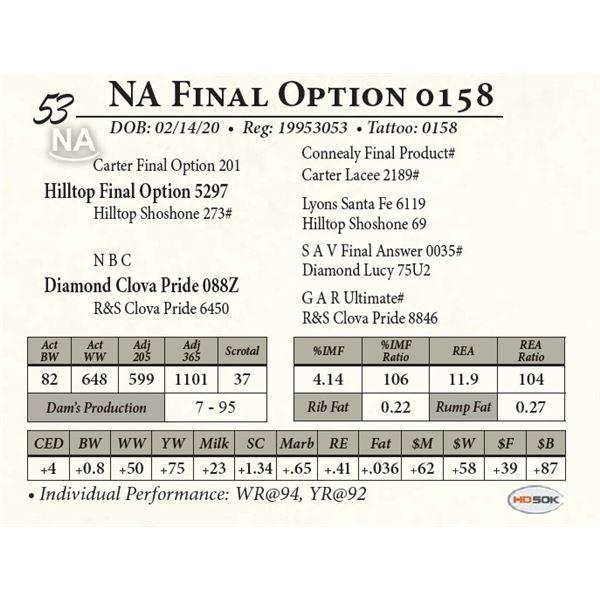 NA Final Option 0158