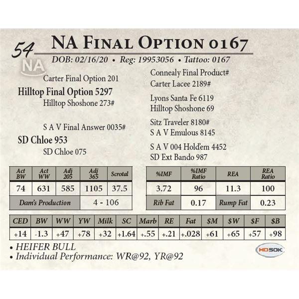 NA Final Option 0167