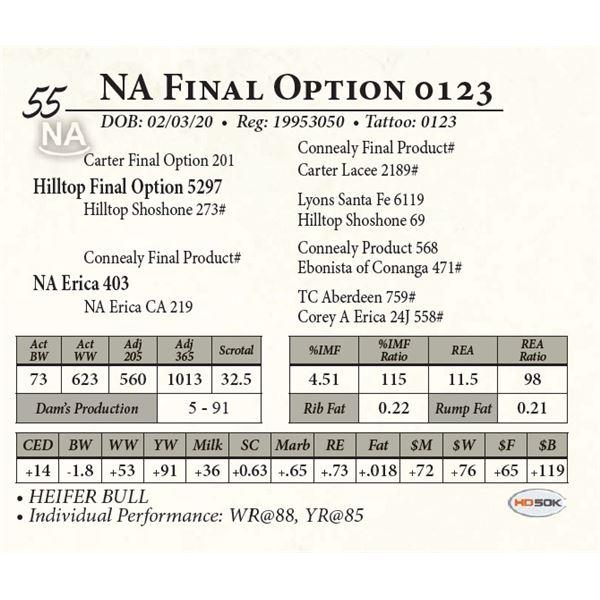 NA Final Option 0123
