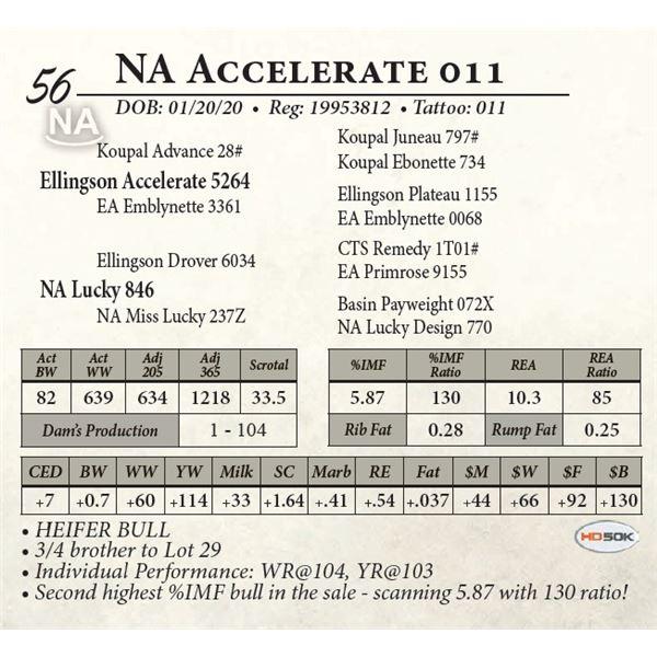 NA Accelerate 011