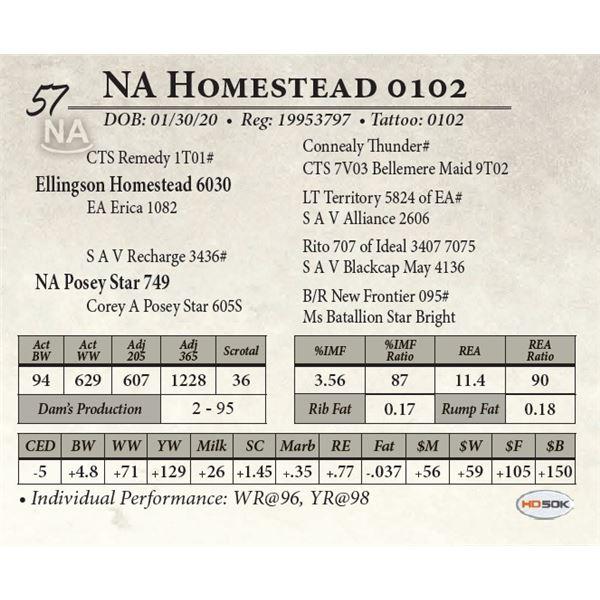 NA Homestead 0102