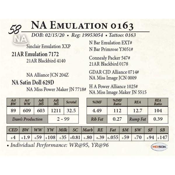 NA Emulation 0163