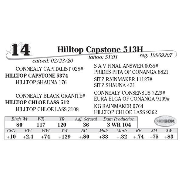 Hilltop Capstone 513H