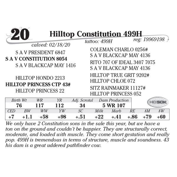 Hilltop Constitution 499H