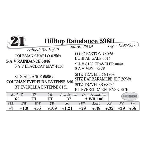 Hilltop Raindance 598H