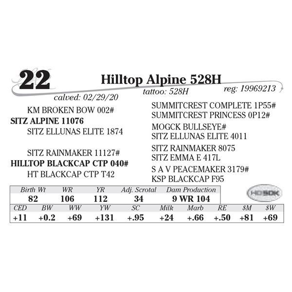 Hilltop Alpine 528H