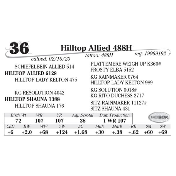 Hilltop Allied 488H