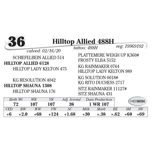 Hilltop Allied 488H