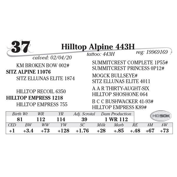 Hilltop Alpine 443H