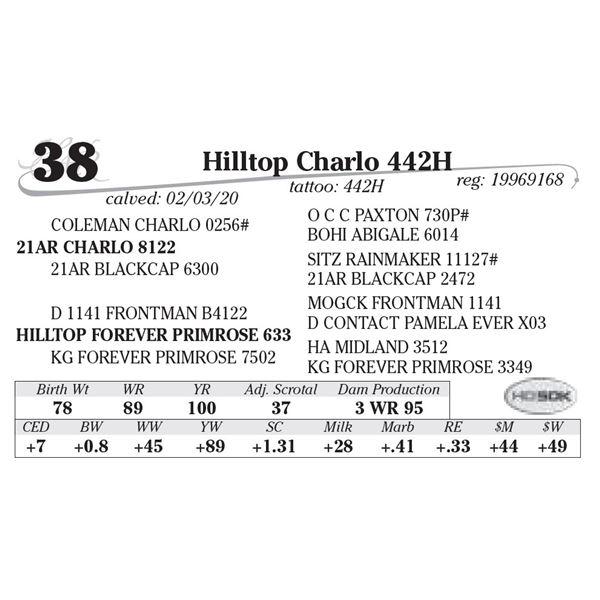 Hilltop Charlo 442H