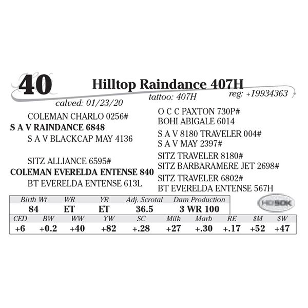 Hilltop Raindance 407H
