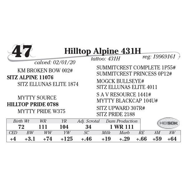 Hilltop Alpine 431H