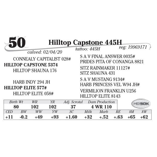 Hilltop Capstone 445H