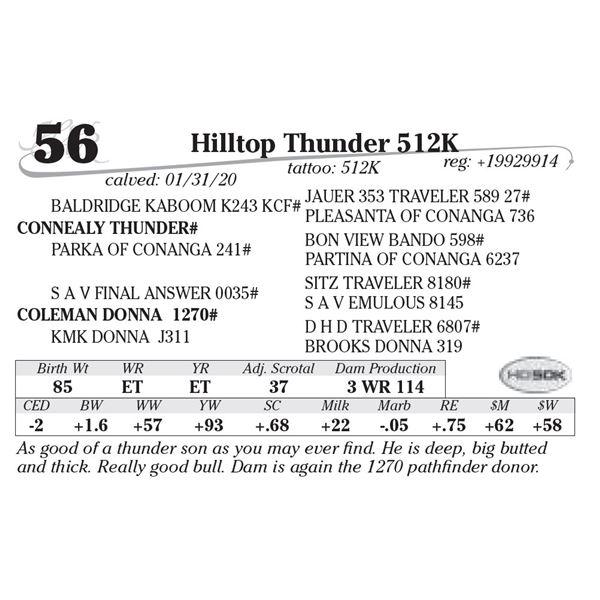 Hilltop Thunder 512K