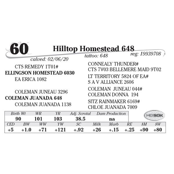 Hilltop Homestead 648