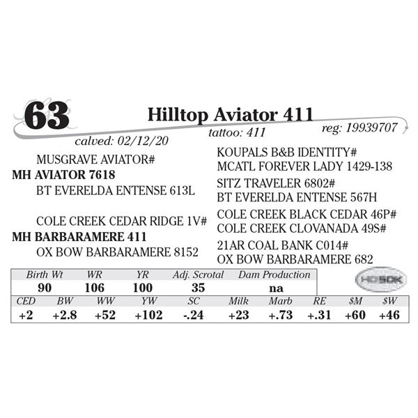 Hilltop Aviator 411